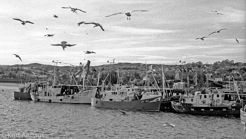 Killybegs 1976 33 5